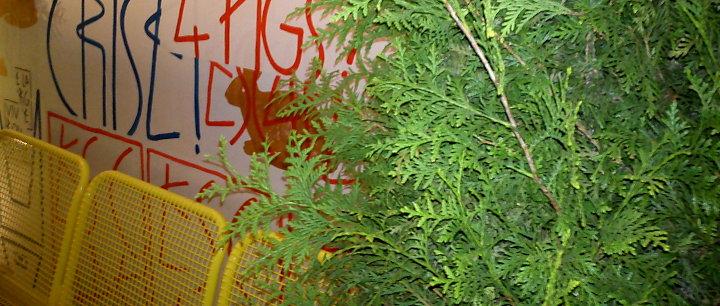 Bank, Baum, Streetart