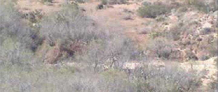 Verpixeltes Bild einer Wüste.
